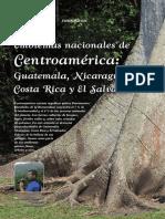 Reportaje Fotográfico%3a Emblemas Nacionales de Centroamérica%3a Guatemala%2c Nicaragua%2c Costa Rica y El Salvador.