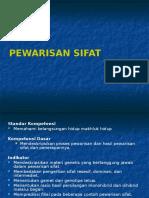 6-Pewarisan Sifat.pptx