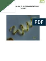 Alga Espirulina El Superalimento Del Futuro (1)