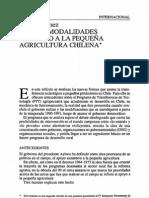 Sergio Gomez - nuevas modalidades de apoyo a la pequeña agricultura chilena