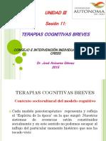 SESION 11 CONSEJERIA BREVE Y EN CRISIS 2015