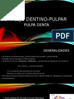 Dentina Y pulpa