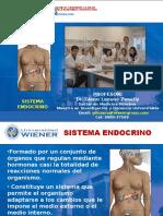 Sistema Endocrino Unw 15-II