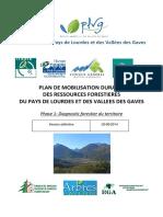PLAN DE MOBILISATION DURABLE DES RESSOURCES FORESTIERES DU PAYS DE LOURDES ET DES VALLEES DES GAVES- Phase 1 Diagnostic forestier du territoire