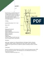Articole FB Puncte Si Harti Acupunctura