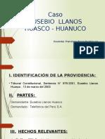 Tema 5. Caso Llanos Huasco Eusebio Exponer (1)