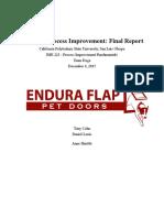 petdoors final report final copy