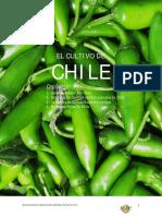 El Cultivo de Chile