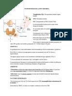 Resumen Autoinmunidad de La Enf Tiroidea-Vasculitis