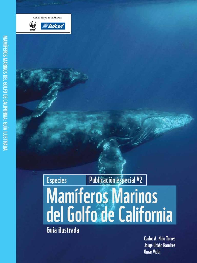 Guia de Mamiferos Marinos Del Golfo de California