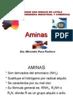 CLASE_Ndeg_27-_AMINAS
