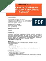 """Diplomado - """"Violencia de Género, Feminicidio y Violencia Sexual"""" - 2016"""