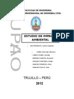 Estudio de Impacto Ambiental Informe