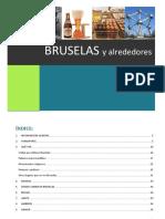 Guía turística Bruselas y alrededores