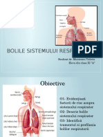Bolile Sistemului Respirator