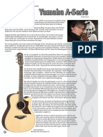 Richard Graf plays Yamaha Guitars