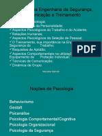 Psicologia Na Engenharia de Segurança Comunicação e Treinamento
