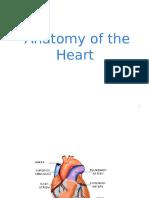 Anatomyoftheheart 141215104035 Conversion Gate02