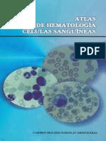 atlasdehematologiacelulassanguineas-140908204258-phpapp01