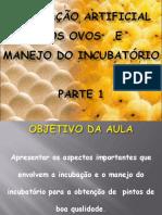 aula_13_incubacao_parte_1.pdf