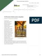 35 Árvores Ideais Para Calçadas - Jardineiro