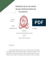ensayo,metodologia,investigacion.docx