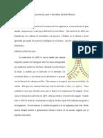 Replicación de Adn y Sintesis de Proteinas