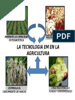 LA TECNOLOGIA EM Y LA AGRICULTURA.pptx