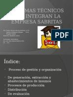 Sistemas Técnicos Que Integran La Empresa Sabritas