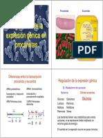 operones bacterianos
