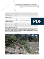 Ficha Tecnica-Poblacion Vulnerable Activa Qda-Bocatoma Llecyac