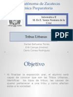 Presentación Tribus Urbanas 1
