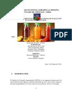 Informe 1- Pi Final