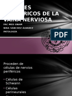 Tumores Perifericos de La Vaina Nerviosa