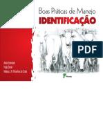 bovino identificao.pdf