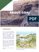 About Coal - Copy