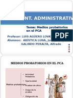 Medios Probatorios PCA