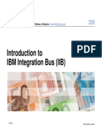 IBM Integration Bus for Customers V1(2).pdf