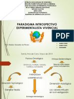 Instrospectivo Vivencial