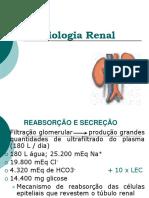 Fisiologia Renal Constanzo parte 2_2009.pdf