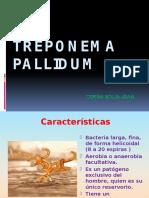 MICROBIOLOGIA SIFILIS (1)