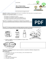Guía de Los Dientes Corregida
