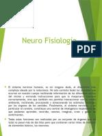 Neuro Fisiologia