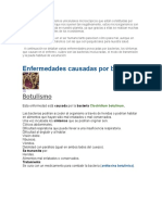 Enfermedades Causadas Por Virus y Bacterias