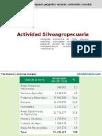 Actividad Silvoagropecuaria en Chile