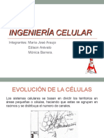 Ingenieria_Celular.ppt