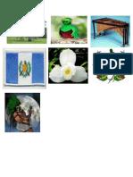 imagenes simbolos patrios.docx