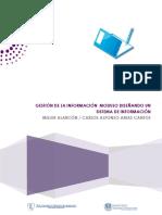 Implemetando un sistema de Informcion.pdf