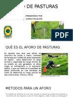 AFORO DE PASTURAS.pptx