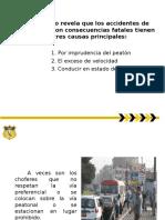 2.- Ponencia de Seguridad Vial Oficial-parte Ix